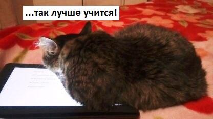 http://proangliyskiy.ru/pered-ekzamenom/pered-ekzamenom