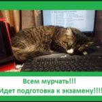 http://proangliyskiy.ru/pered-ekzamenom/utchit-ne-hotchetcya 