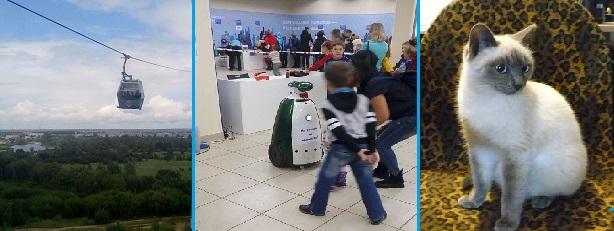 http://proangliyskiy.ru/anglijskaya-grammatika-onlajn/kak-zapomnit-zna…olov-anglijskogo
