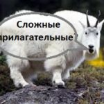 http://proangliyskiy.ru/slovoobrazovanie/slozhnye-prilagatelnye-anglijskogo