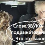 http://proangliyskiy.ru/novaya-leksika/zvukopodrazhatel…lova-angliyskogo